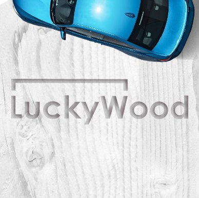 LUCKYWOOD – online service of insurance services purchase