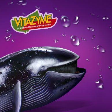 Рекламна кампанія для ТМ Vitazyme